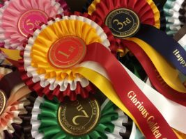 Doggy Doos Salon Rosettes